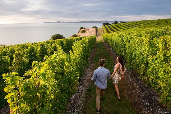 Marlborough Getaway Package